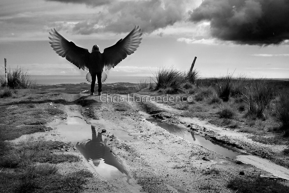 The lament of Icarus by Chris Harrendence