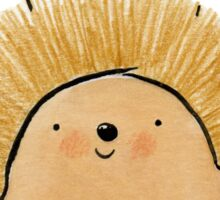 Happy Birthday Hedgehog Sticker