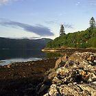 Loch  Sunart by Alexander Mcrobbie-Munro