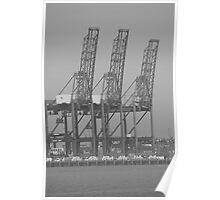 """""""Cranes"""" Poster"""