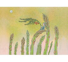 Asparagus Spirit Photographic Print