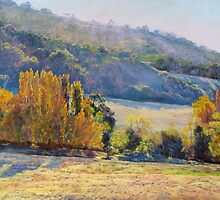 Gentle Shadows, Trawool by Lynda Robinson