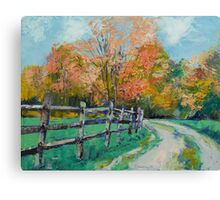 Old Country Road Canvas Print