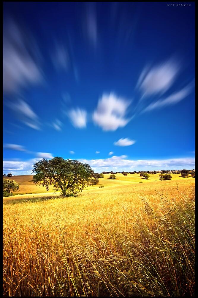 The Endless Plains by José Ramos