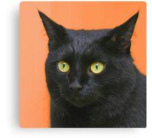 All Hallows Eve Black Cat Canvas Print