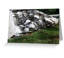 Iguana in Camouflage Greeting Card