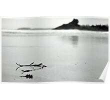 Beach scene nice and sorene  Poster