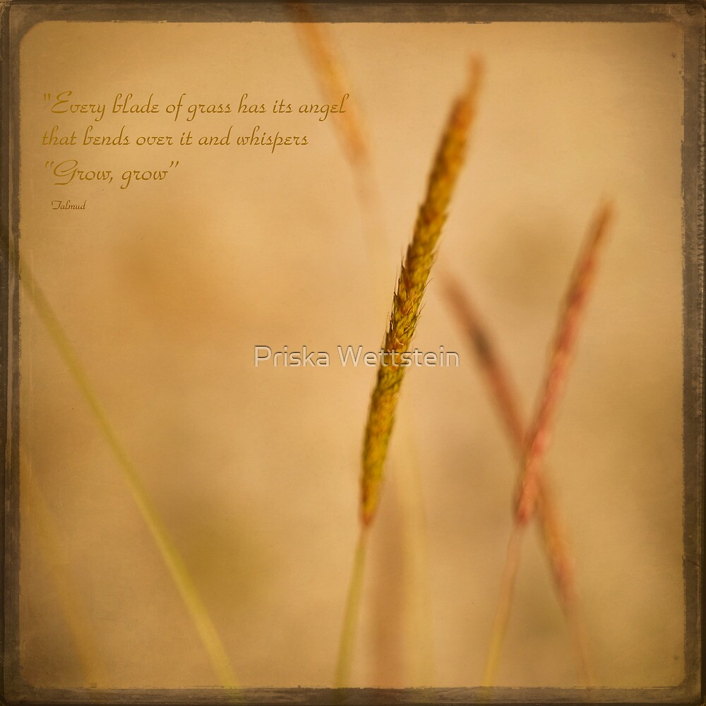 """""""Every blade of grass has its angel that bends over it and whispers """"Grow, grow"""" by Priska Wettstein"""