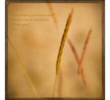 """""""Every blade of grass has its angel that bends over it and whispers """"Grow, grow"""" Photographic Print"""