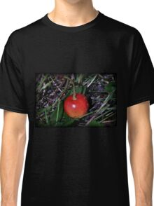 Bird Food Classic T-Shirt