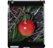 Bird Food iPad Case/Skin