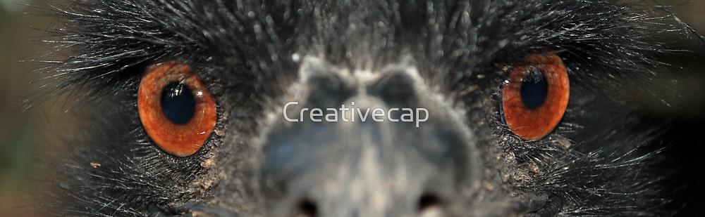 Death Stare by Creativecap