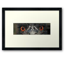 Death Stare Framed Print