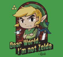 Dear World, I'm not Zelda by Akiwa