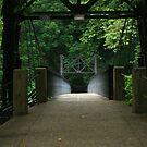 The Crossing of a Glowing Bridge by RockyWalley