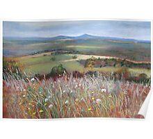 'Meadow Grasses, Anzac Hill' (Seymour) Poster
