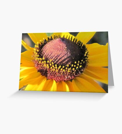 The Heart of A Brown Eyed Susan Greeting Card