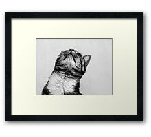 Someone to look up to Framed Print