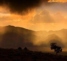 Thunder Storm Across the High Desert  by Jeanne  Nations
