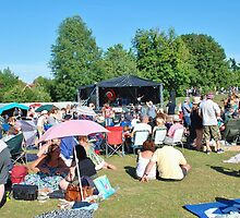 Tentertainment music festival, Kent by David Fowler
