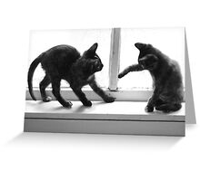2 Cats Playing in Window Greeting Card