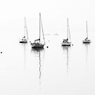 Aberdour - Waiting For The Wind by Kevin Skinner