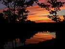 June Sunset Reflections by barnsis