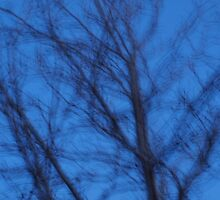 Wind, tree...dusk. by byzantinehalo