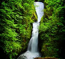 Bridal Veil Falls, Columbia River Gorge by Barbara  Brown