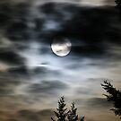 End of June Moon by skreklow