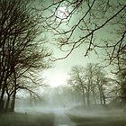 Fog on the Green by nikonplasma