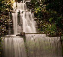 Pukekura Falls by Dean Mullin
