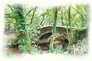 Goodameavy Dartmoor Devon by DonDavisUK