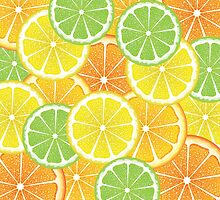 Various Citrus Slices 3 by AnnArtshock