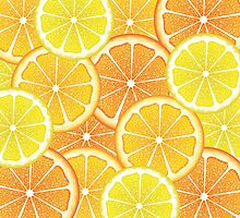 Various Citrus Slices 4 by AnnArtshock