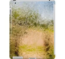 Pathway Through Frosted Glass iPad Case/Skin