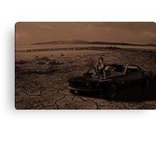 Lonely Desert Canvas Print