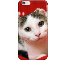 One Eared Rescue Cat iPhone Case/Skin