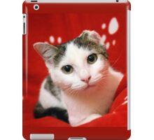 One Eared Rescue Cat iPad Case/Skin