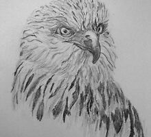 Animals and birds in Pen and Ink and graphite by GEORGE SANDERSON