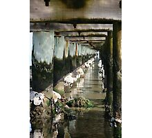 Bolted Photographic Print
