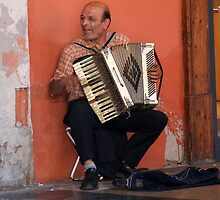 The Accordion Player by Segalili