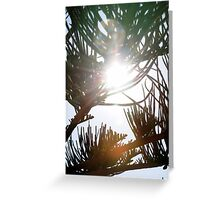 Contre lumiere Naxos Gr Greeting Card