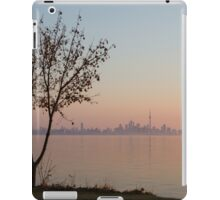 Soft, Pink Morning on the Lake Shore iPad Case/Skin