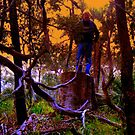 Firelight Change of Day in The Whistlepipe Gully And A Large Garden Nome! by zoolou