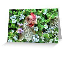 Little hen Greeting Card