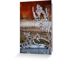 Ice on Weed Greeting Card