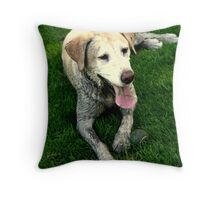Mud, grass and a ball -- the BEST!! Throw Pillow