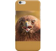 Red Tail Hawk - Family:  Accipitriformes iPhone Case/Skin