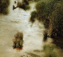 Flood Tide in the Salt Marsh by RC deWinter